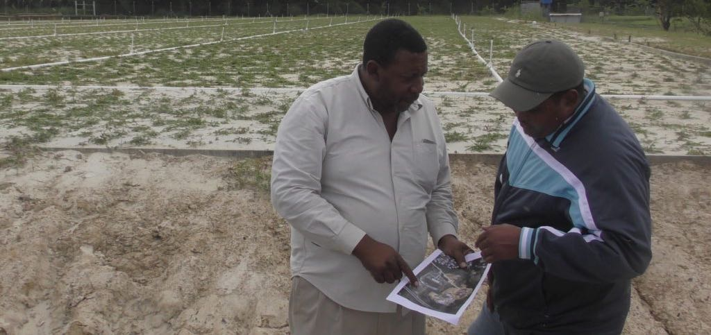 TTFA President David John-Williams (left) shows a graphic to Sports Minister Darryl Smith on Wednesday at the Home of Football site near to one of the new training fields currently under construction. Photo at top shows John-Williams and Smith along with Sportt Chairman Dinanath Ramnarine along with the other Sportt and TTFA officials on Wednesday. Photo/TTFA Media